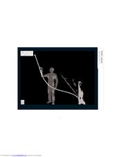 dyson dc14 telescope reach manuals rh manualslib com dyson owner's manual dyson owner's manual