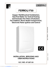 Ferroli domina 102 manuals ferroli domina 102 installation servicing and user instructions manual asfbconference2016 Choice Image