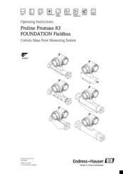 endress hauser proline promass 83 manuals rh manualslib com Endress Hauser Promass Pulse Output Endress Hauser Promass Pulse Output